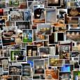 Galeria inspiracji składa się zkilku części. Zawierają one łącznie ponad trzysta zdjęć.