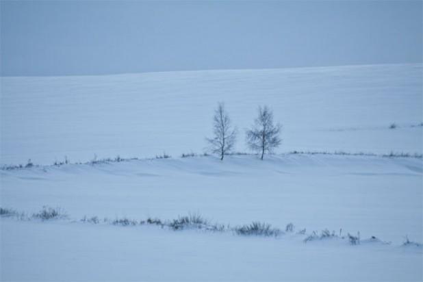Zima - wysoka temperatura barwowa