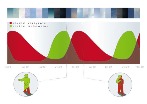 wpływ światła dziennego naludzki organizm